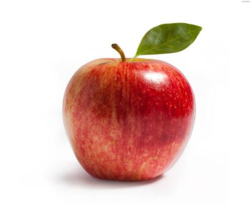 apple pic